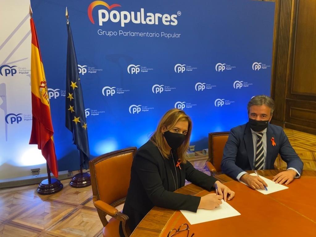 """El PP presenta enmiendas por 74 millones para """"colocar a Cantabria en el ranking de inversión por habitante"""""""