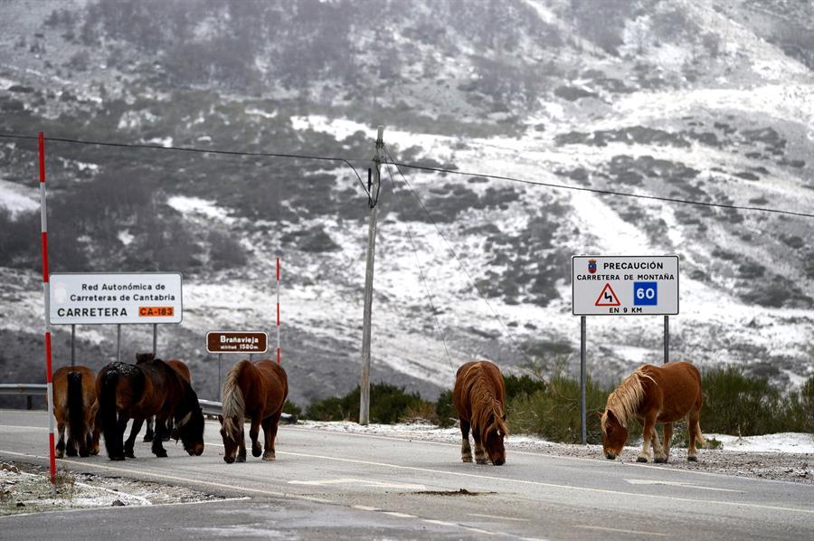 Las primeras nieves llegan a Cantabria