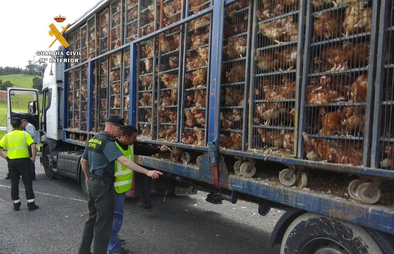 El camión fue inspeccionado por la Guardia Civil. /ALERTA