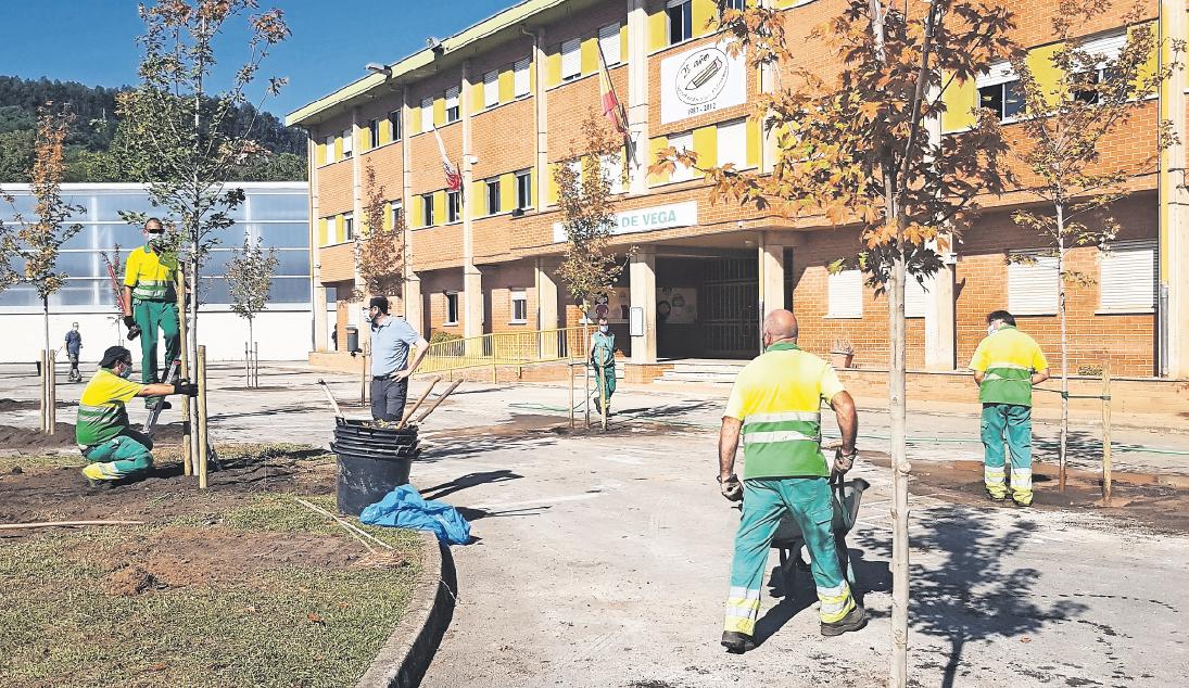 La ciudad incrementará  las zonas verdes  y el arbolado